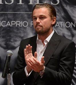 Leonardo Dicaprio - Foundation photo