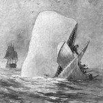 Moby Dick illustration by A. Burnham Shute