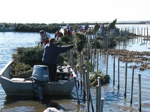 Recycling xmas trees- Jefferson Parish Department Environmental Affairs