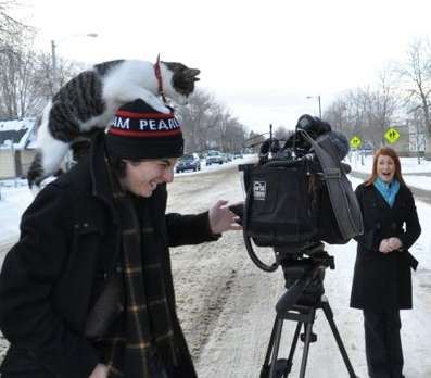 cat on cameraman head-CBCphoto