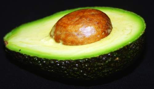 Avacado-Flickr-arash rk-CC-500px