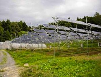 solar panels in Fukishima - Rob Gilhooly