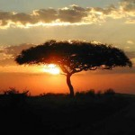 sunset African Masai-angela7dreams-CC-Flickr