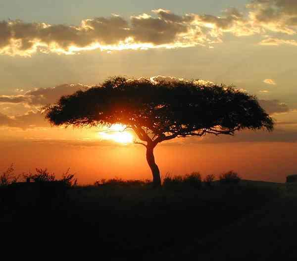 sunset African Masai-angela7dreams-CC-Flickr