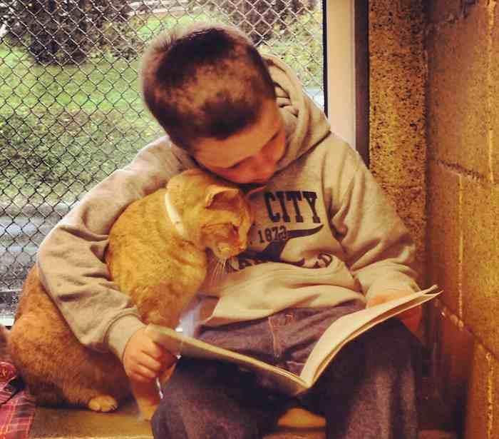 Reading Buddies Program Berks CountyAnimalShelter