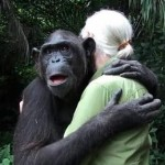 chimp hugs Jane Goodall