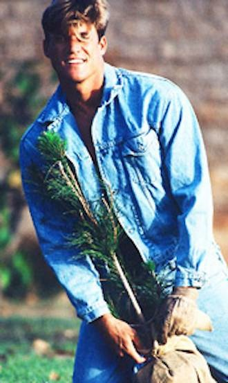 planting sapling-Sun