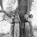 Chipko movement hugging tree in India-fiaruse