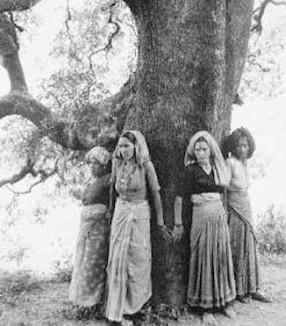 Chipko movement hugging tree in India-fiaruse