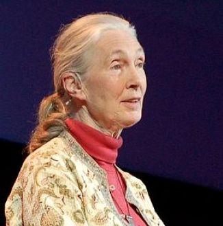Jane Goodall-Tedx Conf