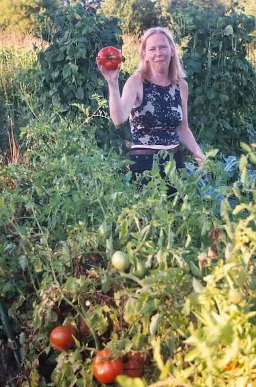 Tomato patch Amy Grant