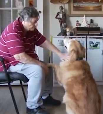elderly with dog-APvideo