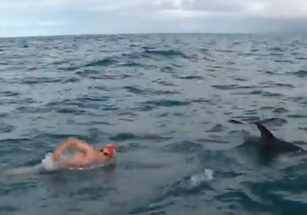 swimmer_with_dolphin-video-OceansSevenMission