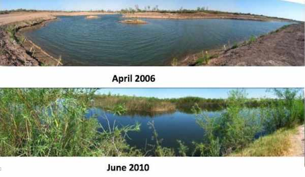 environmental issues colorado river report Over the next week, new mexico political report will be reporting fromnot new mexico instead, we'll be taking a closer look at the colorado river the colorado.