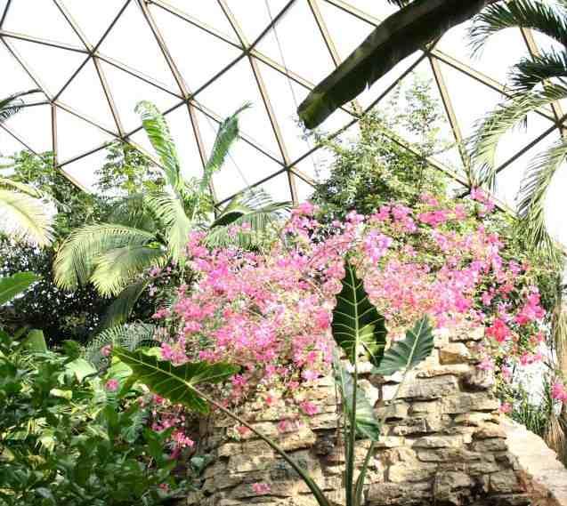 GreaterDesMoines-Botanical-Garden