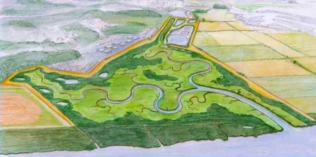 Hamilton_Wetlands_Restoration-Cal_Coastal_Conservancydotgov