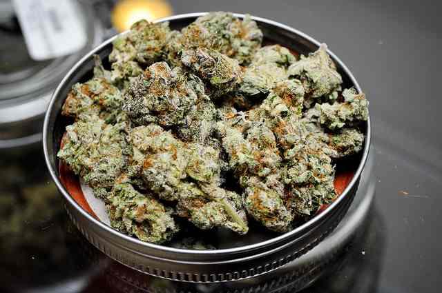 Medical-marijuana-Blackberry-Kush-CC-flickr-Dank_Depot