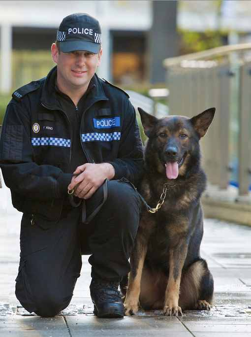 West_Midlands_Police_dog-CC-Flickr
