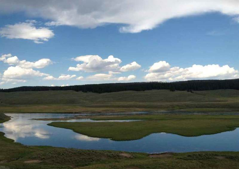 Yellowstone reflections by Mary Erickson of Billings, Montana