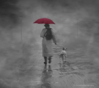 walking_w_umbrella_dog_cc-flickr-h_koppdelaney