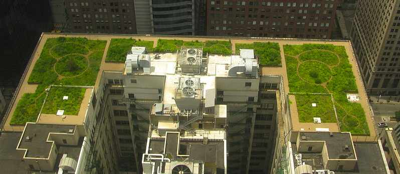 Chicago_City_Hall_Green_Roof-CC-TonyTheTiger