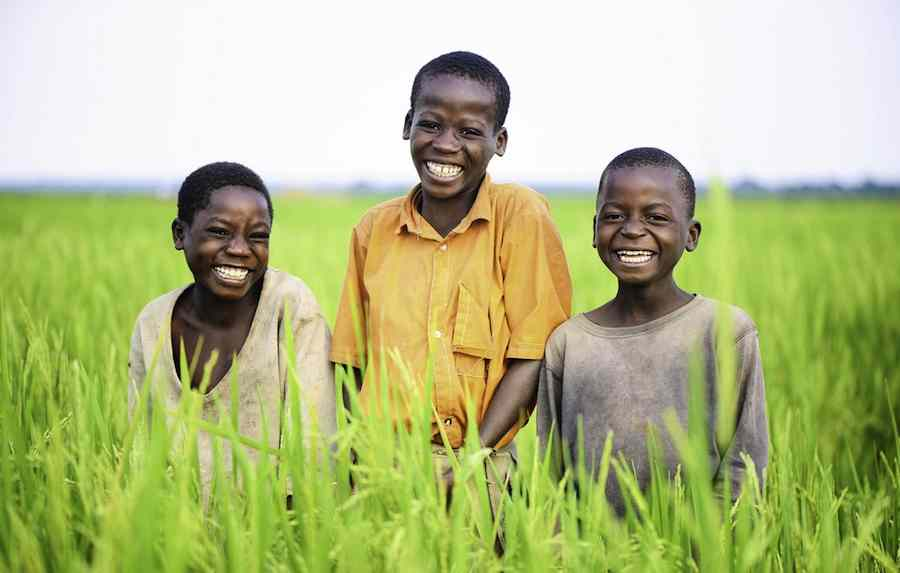 Children of Ugandan Rice Farmers Andy Kristian Agaba-andykristianDOTcom