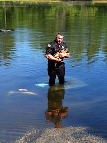 Officer-David-Harriman-dives-for-doggie
