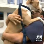 pit-bull-mix-rescues-from-fire-KPIX
