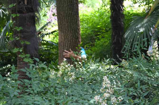 Hugging a tree in People's Park in Shanghai, China by Nathan Nelson