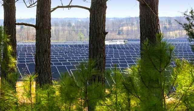 Apple-Maiden-Solar-Farm-in-North-Carolina