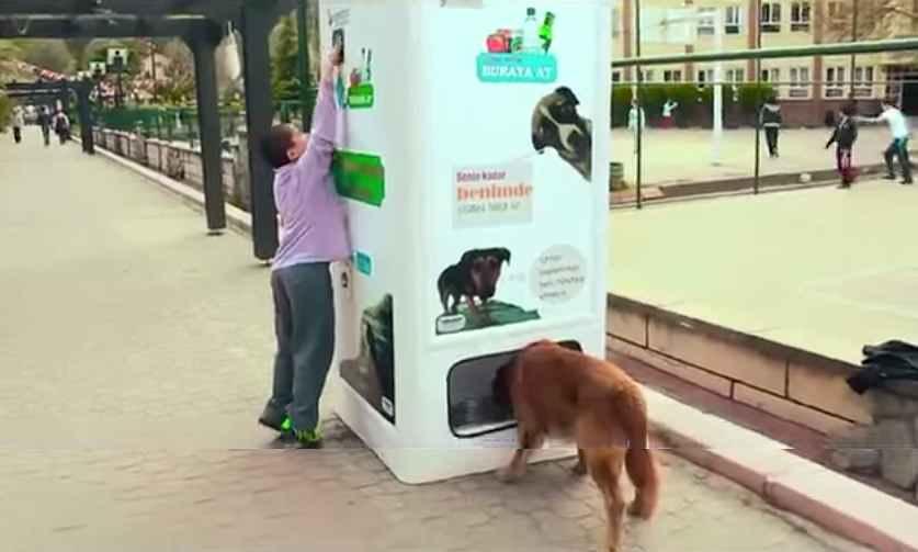 dog-food-recycling-dispenser
