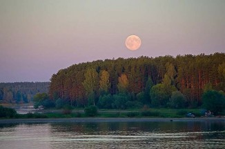 July 12 moon over woodland by Katya