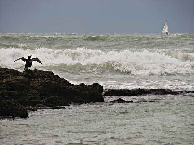 waves-surf-sailboat-cc-Nekanaiz