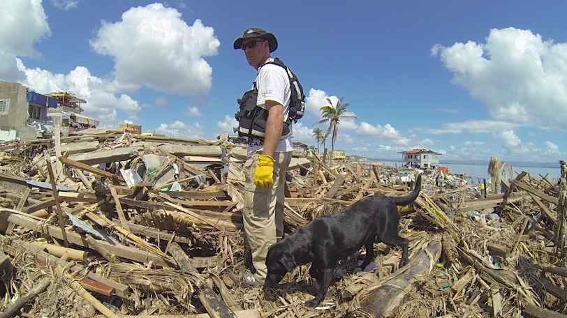 lab-search-rescue-dog-AmericanKennelClub-ACEaward