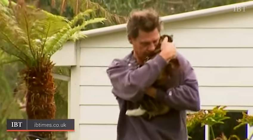 cat-saves-man-from-fire-IBTimesVid