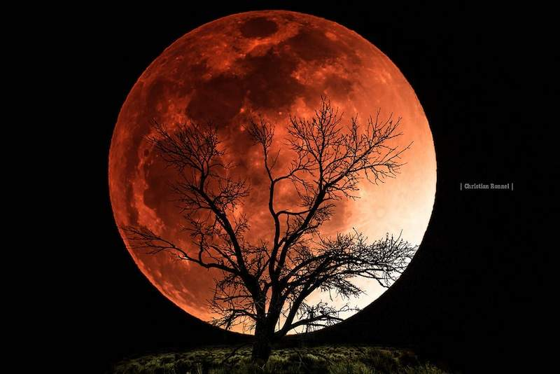 Blood Moon Eclipse To Be Visible Beginning Tomorrow Morning - The.