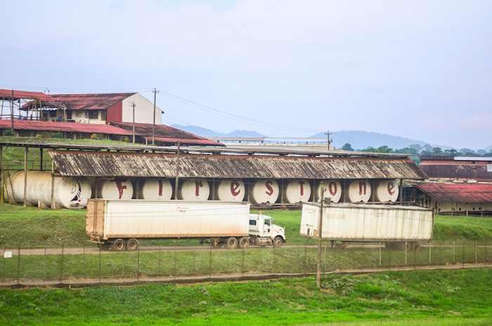 Firestone-rubber-plantation-Liberia-CC-jbdodane-700px