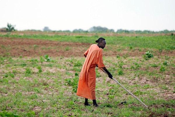 farming-Africa-UNPhoto-by-Albert_González_Farran