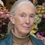 Jane_Goodall_2015-pubdomain-sm