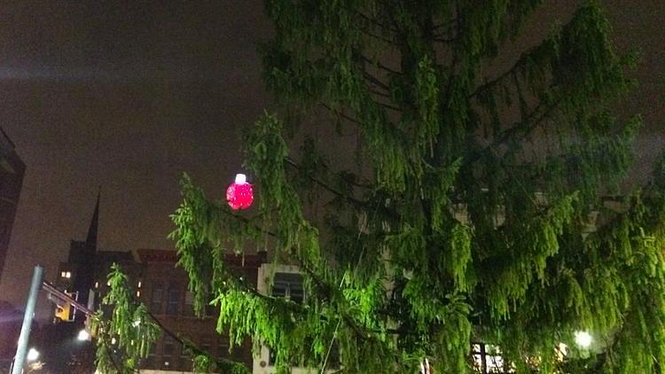 charliebrown tree christmas-ReadingPA-MorningCall-FrankWarner