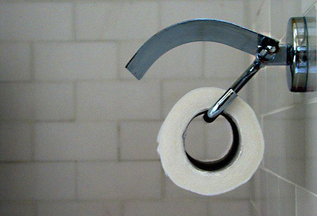 toilet-paper-roll-emdot
