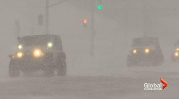 Jeeps-in-blizzrd-GlobalNewsVideo