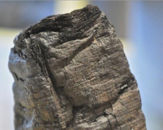 papyrus-scroll-carbonized by vesuvius-NatureJournal