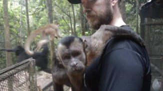 trevorKing-monkey-submitted