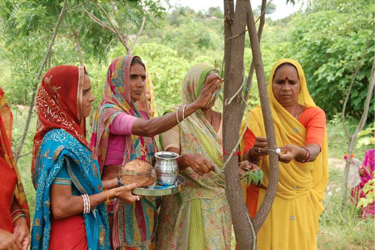 111-trees-planted-India-women.jpg