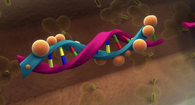 TKM-Ebola-Guinea-drug