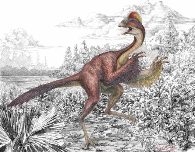 Chicken-from-hell-dinosaur-PhotoCredit- Mark-A-Klinger-Carnegie Museum of Natural History