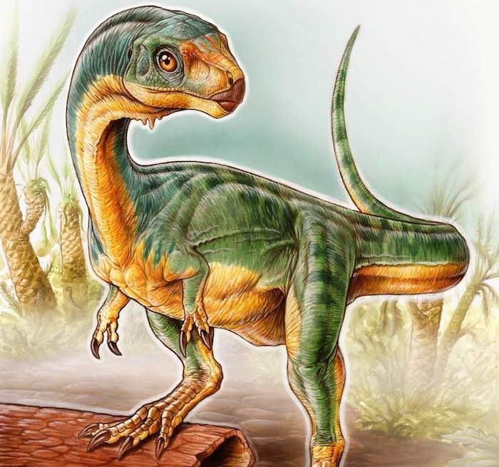 Chilesaurus-diegosuarezi-verticle