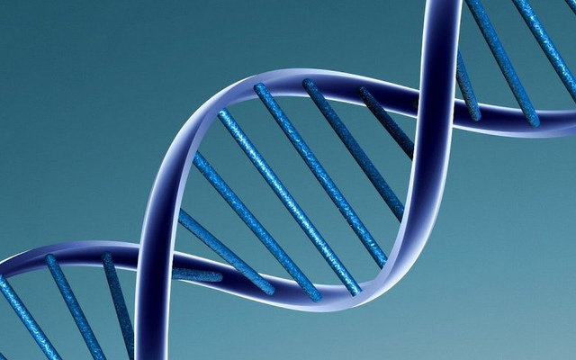 DNA-photoby-Caroline Davis2010-CC