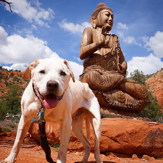 Poh finds Zen at Peace Park in Arizona